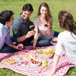 ¿Qué tener en cuenta al hacer un picnic?