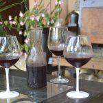 Paso a paso del vino artesanal